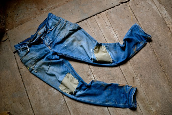 essay on blue jeans and life daniel baylis